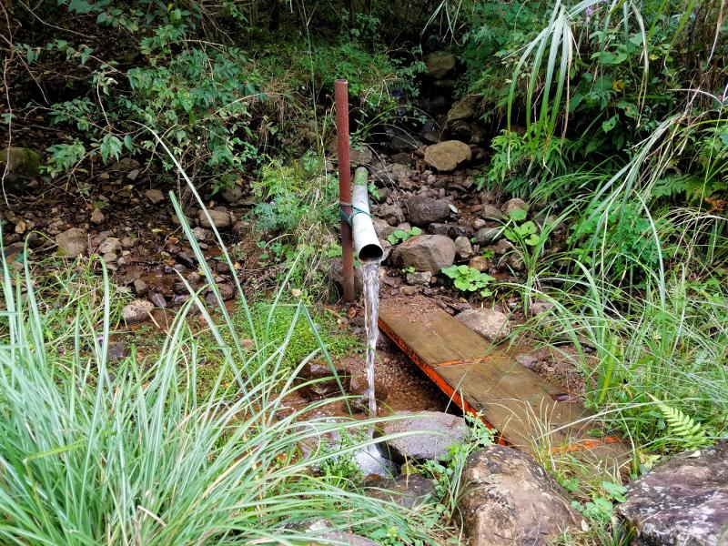 キャンプ場内の湧水